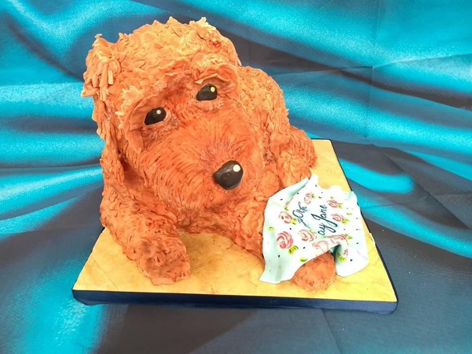 Cockerpoo cake